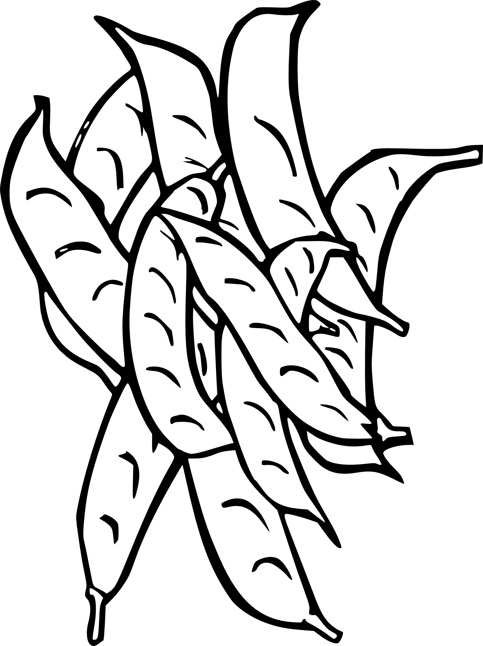Haricot Vert additionally Hey Arnold moreover Stock Illustration Ballerina Coloring Page Useful As Book Kids Image50763368 moreover How To Draw Ruler additionally 522. on disney coloring pages clip art
