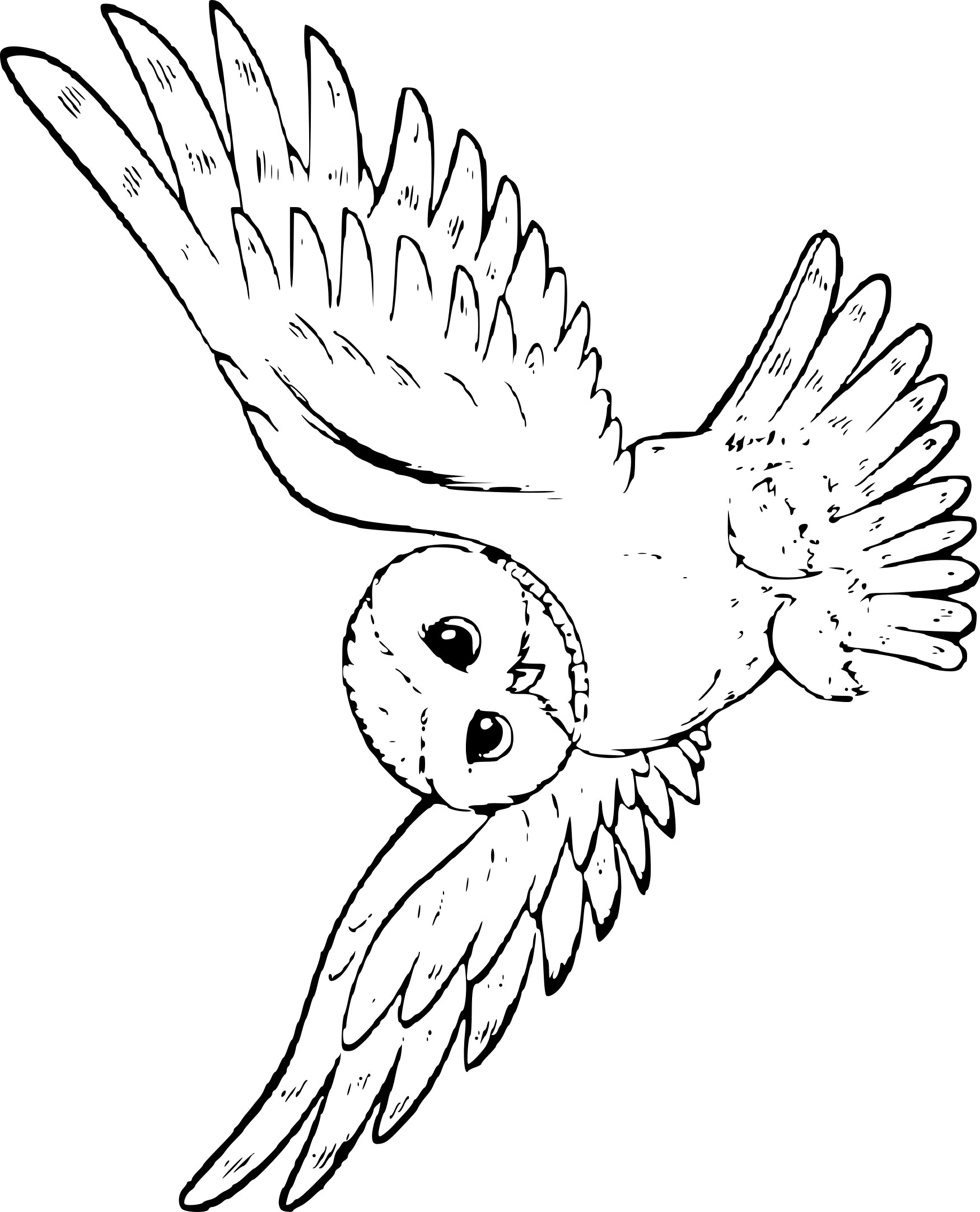 Coloriage de harry potter hibou imprimer sur coloriage de com - Harry potter chouette ...